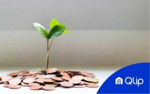 Brotes verdes creciendo de un montón de céntimos de euro tras el logo de Qlip simbolizando el sueldo de un agente inmobiliario